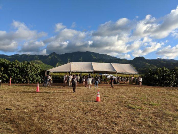The big white tent at Waialua sunflower fields.