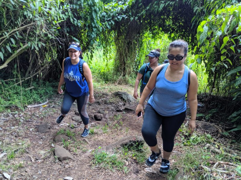 Morning Exercise On The Makiki Valley Loop Trail