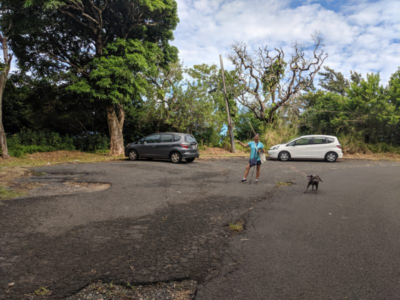 """Mom and Daisy modeling in front of the Tantalus Drive """"parking lot""""."""