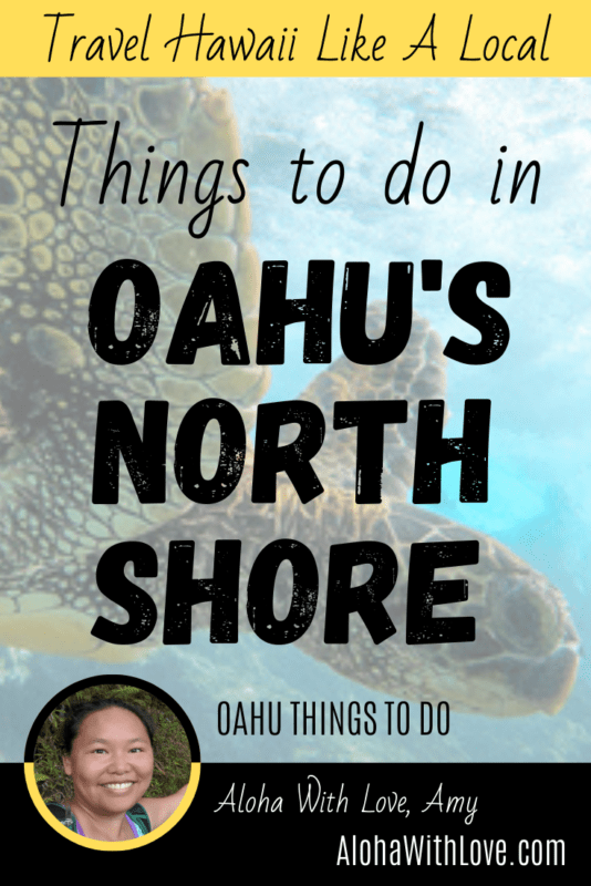 Pinterest Pin: Things to do in Oahu's North Shore