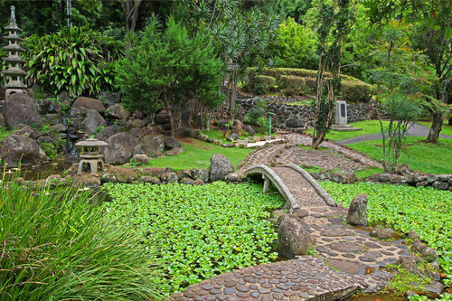 A Japanese garden with water ponds in Iao Valley State Park on Maui, Hawaii.