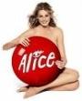 alice2.jpg