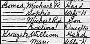 Genealogy Friday: Don't Forget Census Records