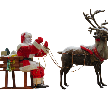 Christmas Traditions: Reindeer
