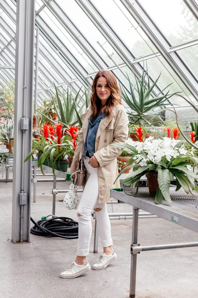 A Lo Profile in the greenhouse at the Isabella Stewart Gardner Museum in Boston via her Boston Travel Guide