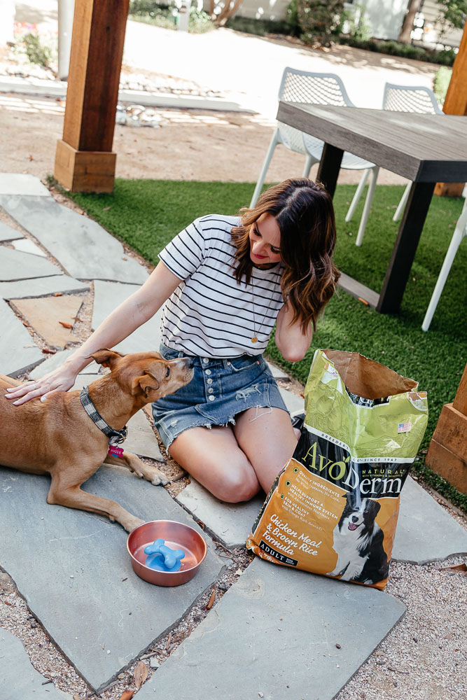 Lauren Roscopf from A Lo Profile and her dog Maddie with AvoDerm Natural Pet Food.