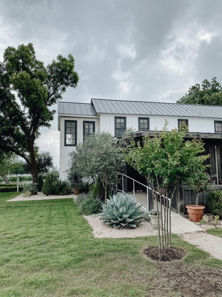 Sharing my full Fredericksburg travel guide including where to stay, where to wine taste, where to eat, what to do, & more when visiting Texas Wine Country.