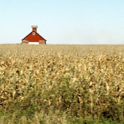 Iowa, From a Car Window