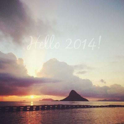 Happy New Year 2013-14!