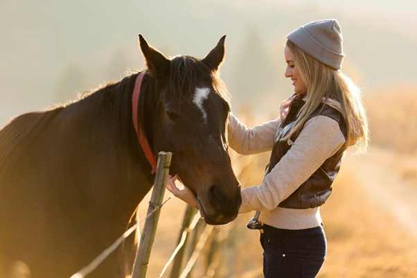 Image result for Bonding with your horse