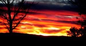 Alpaca Mining Company sunset