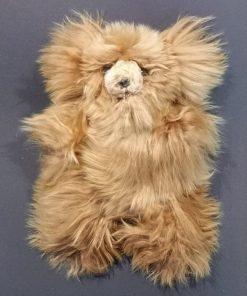 bär teddy1