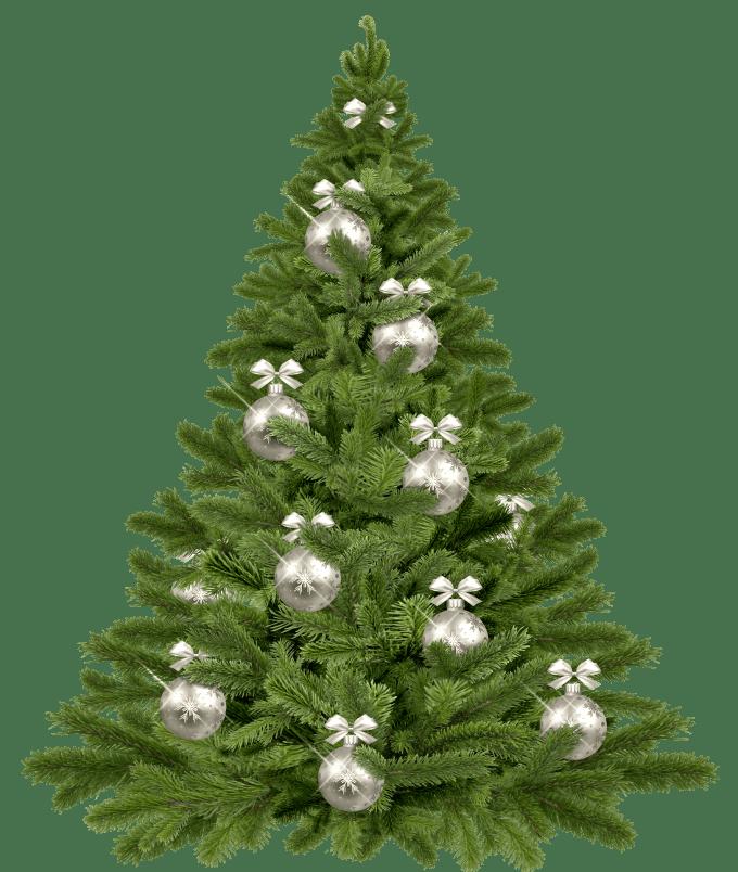 christmas-tree-1853582_1920(1)