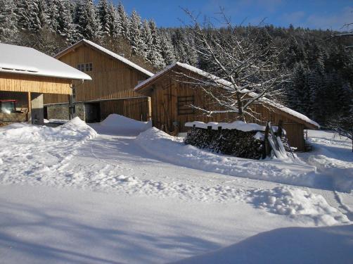 Hof im Winter