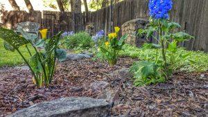 Gracious Garden