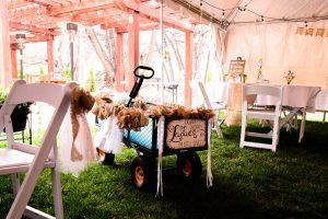 Custom Baby Carriage