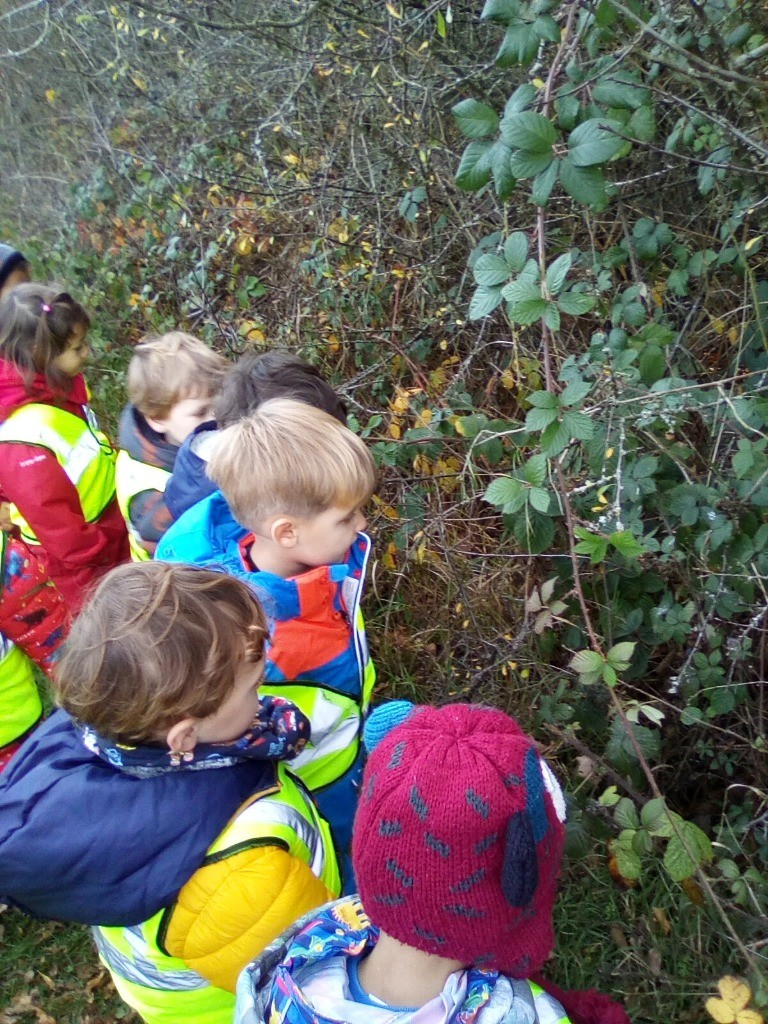 Forest School Sessions at Alphablocks Nursery