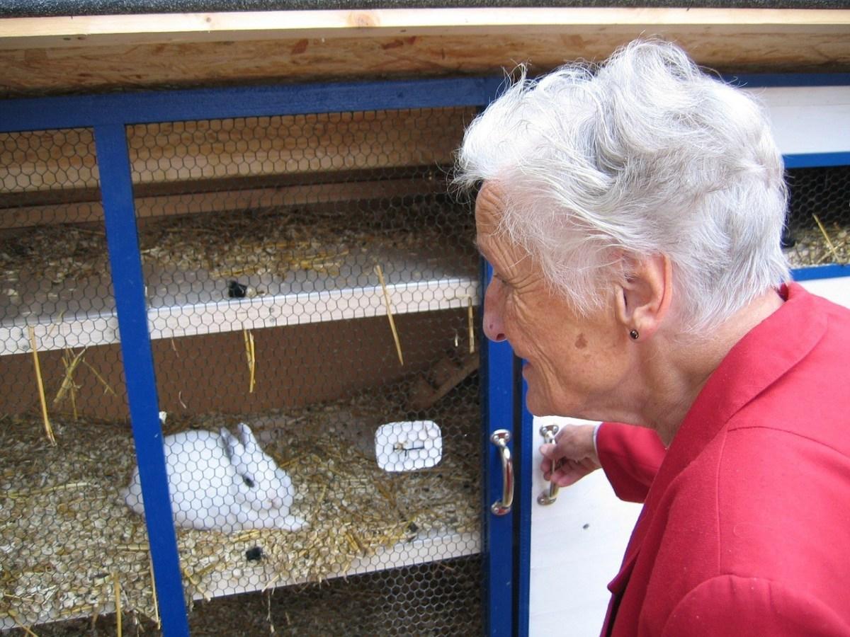 認知症予防のためにウサギを飼う高齢者