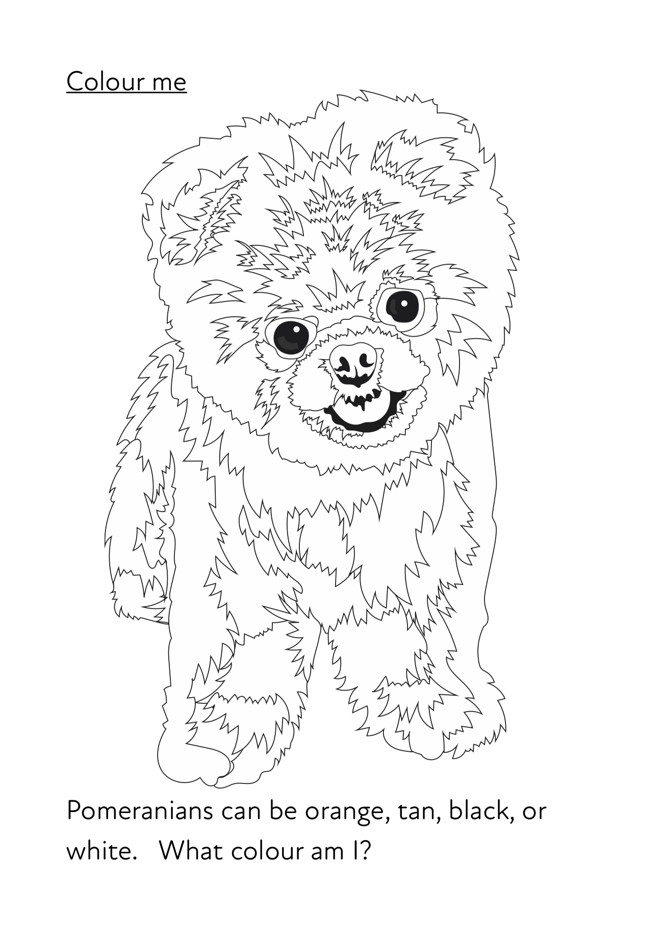 Meet Pom Pom A Fun Writing And Drawing Activity 6 Years
