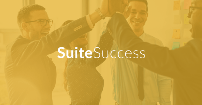suitesuccess netsuite solution