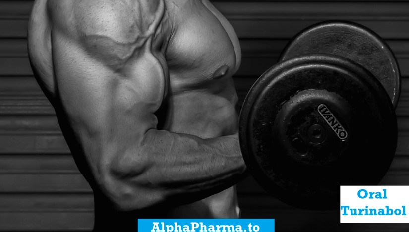 oral-turinabol-working-out