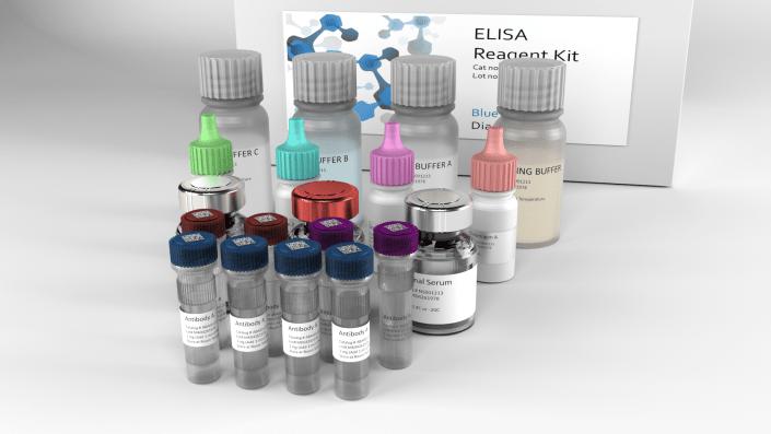reagent kit antibodies