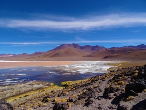 Alpinca Laguna Colorada