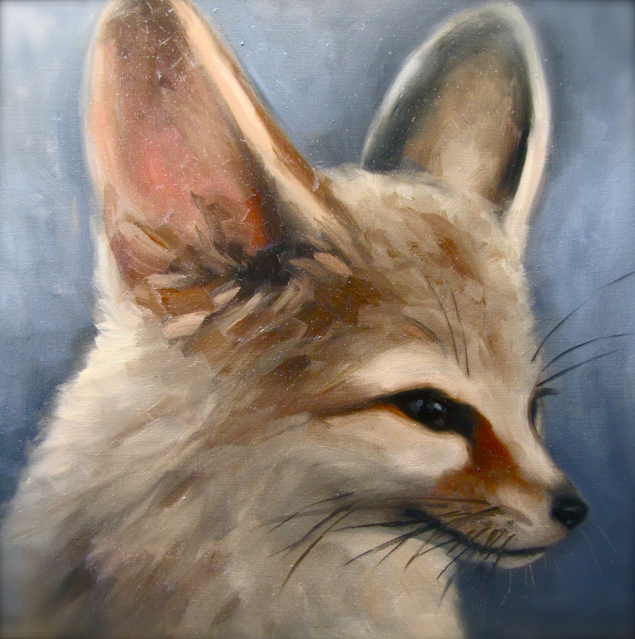 fennec fox, original oil art