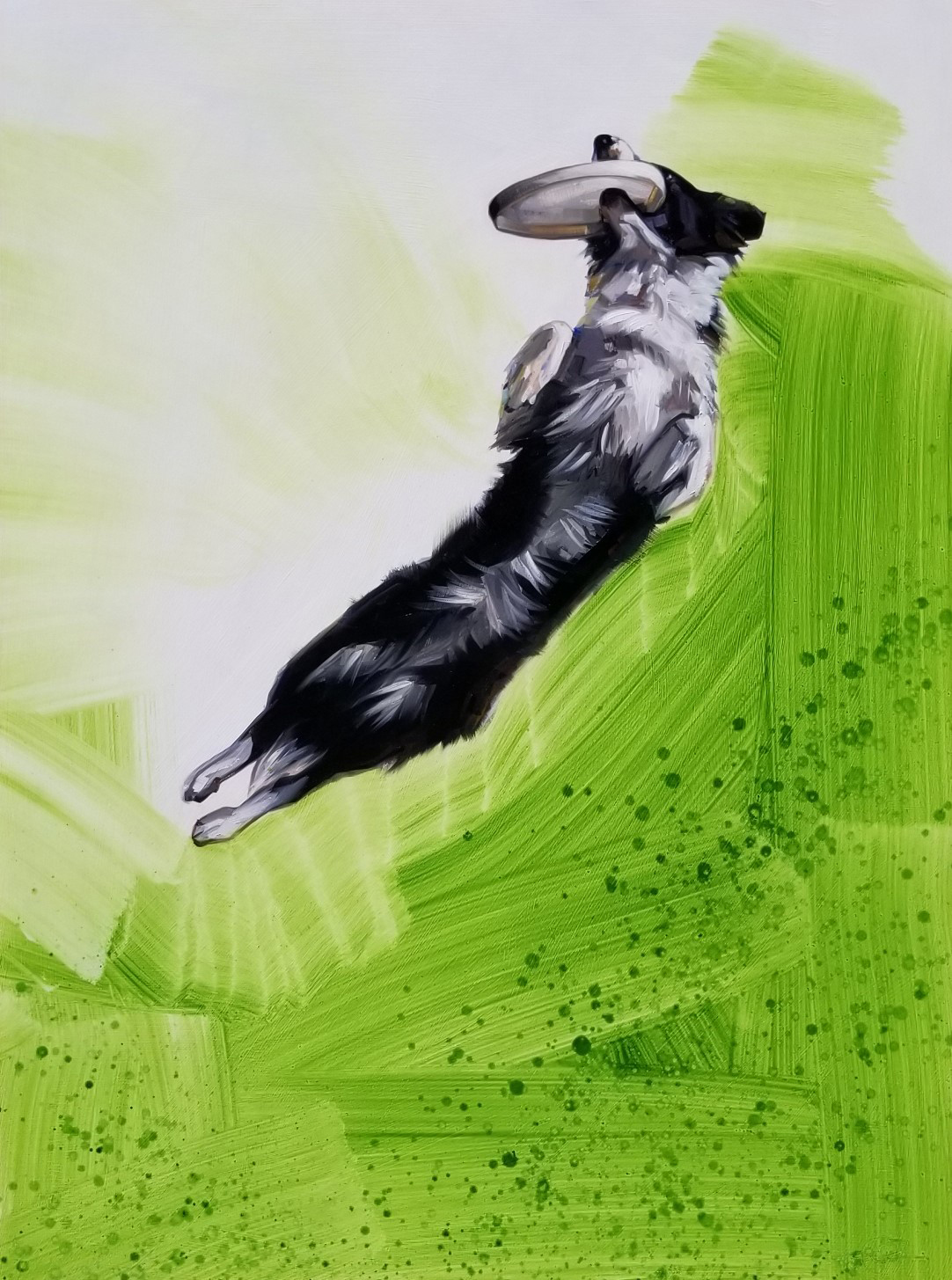 oil painting of dog, frisbee catch, border collie