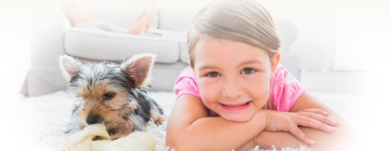 seattle-carpet-cleaning-slider-kid-dog