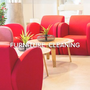 Seattle Furniture Cleaning
