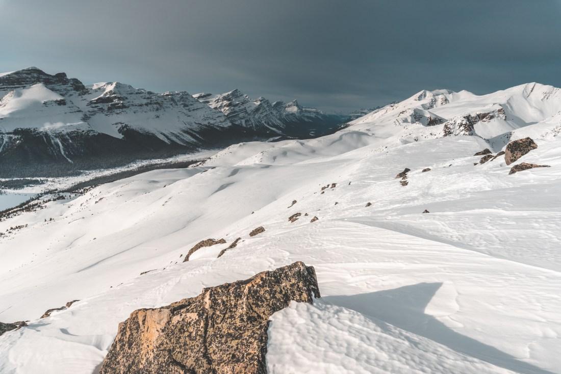 Crystal Ridge, looking North towards Bow Summit and Mt. Chephren