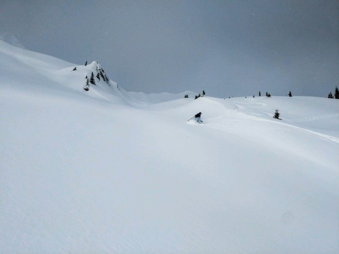 Deep and perfect Powder on Ogden Bench