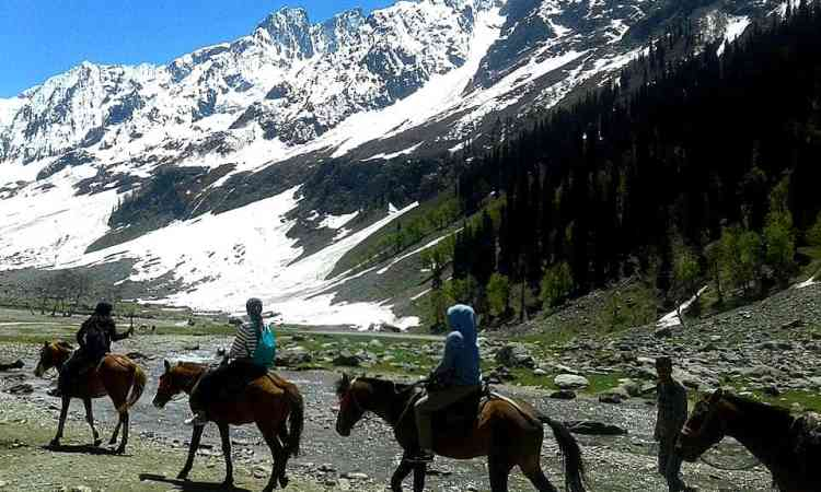 Tajwais glacier hiking tour