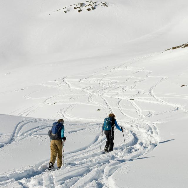 Походы на снегоступах