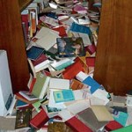De bibliotecas y escalas sísmicas