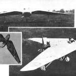Un pterodáctilo del siglo XX
