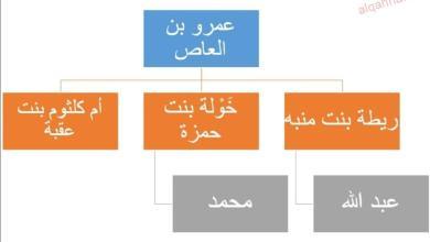 صورة أرطبون العرب وداهيته ( الحلقة الثانية والعشرون) عائلته