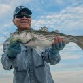 another nice bass. photo by Al Quattrocchi