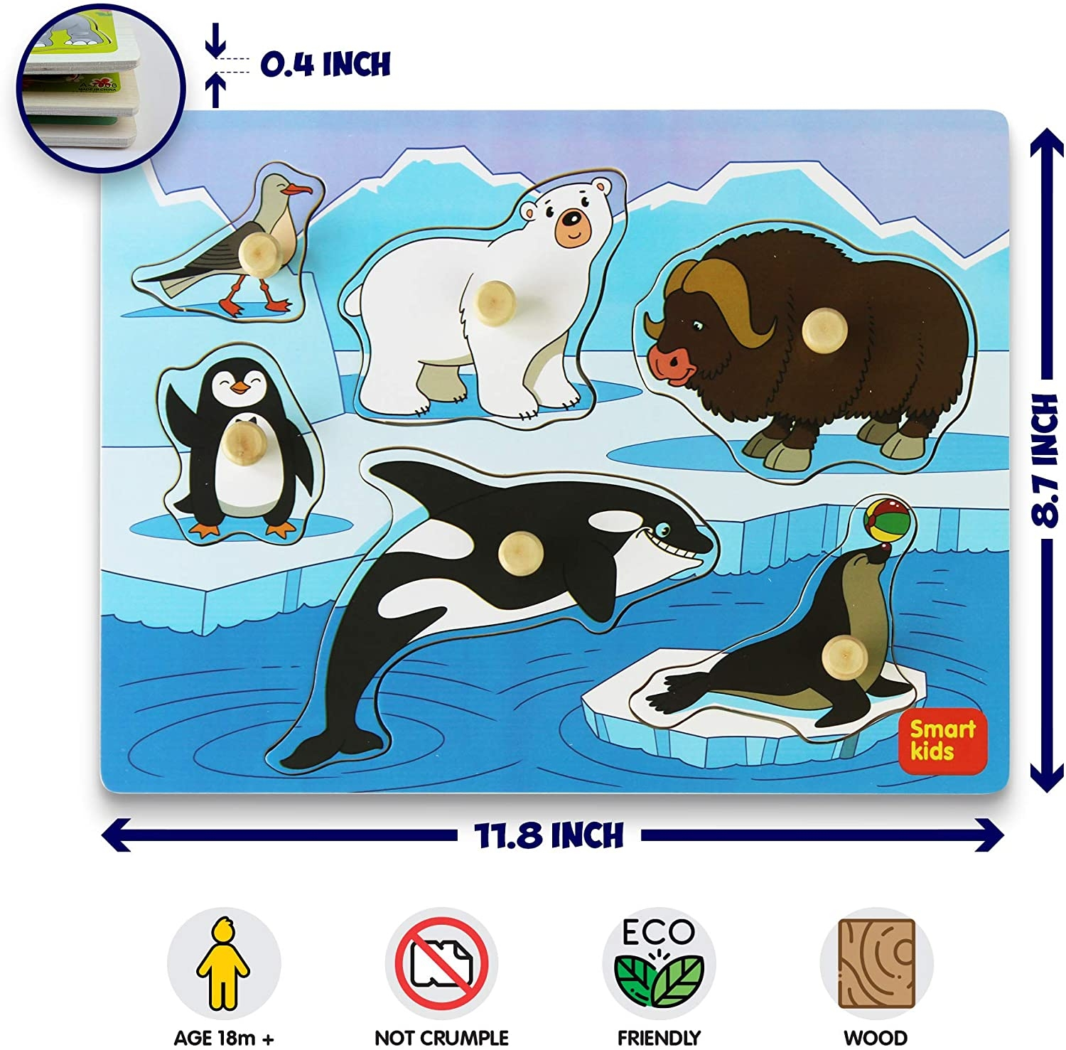8 Pics Arctic Animals For Kids And Review