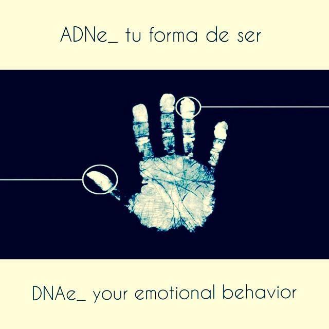 Tendencias: El ADN Emocional