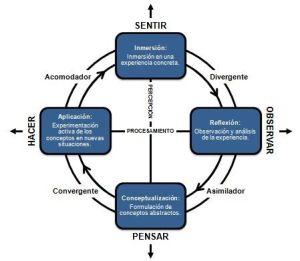 La rueda del aprendizaje de Kolb