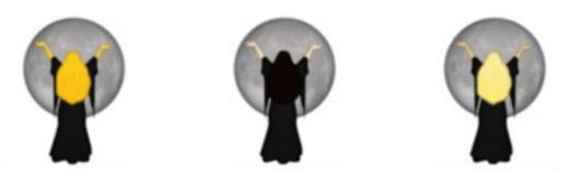 emoji_brujas4.png