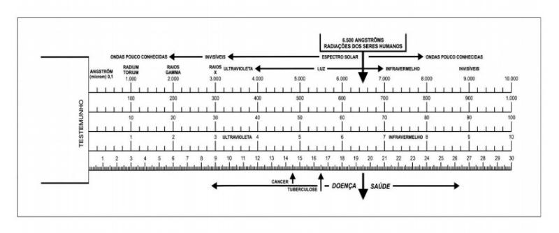 Biometro de Bovis - Alquimia Operativa