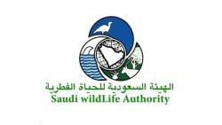 رابط الهيئة السعودية للحياة الفطرية والاجراءات المطلوبة