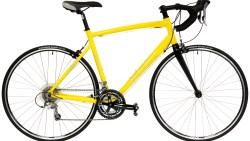 تفسير حلم سرقة الدراجة في المنام
