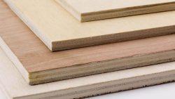 تفسير حلم خروج الخشب من اليد في المنام