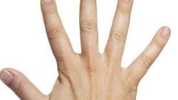تفسير حلم اصابع اليد مقطوعة في المنام