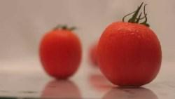 تفسير حلم الطماطم البندورة للنابلسي في المنام