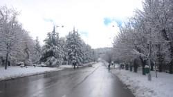 تفسير حلم الشتاء مع المطر في المنام